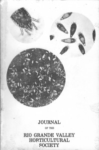 v31 1977 front cover