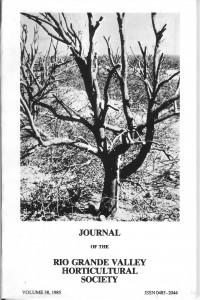 v38 1985 front cover