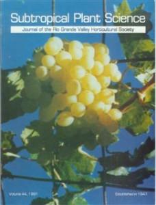 v44 1991 front cover
